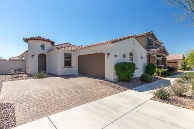 Mesa Single Family Home For Sale: 10717 E Pivitol Avenue