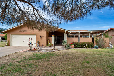Mesa Single Family Home For Sale: 586 Leisure World