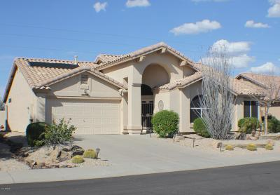 Peoria Single Family Home For Sale: 8756 W Sierra Pinta Drive