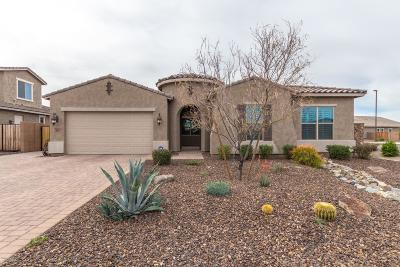Gilbert Single Family Home For Sale: 3877 E Chestnut Lane