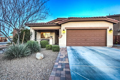 San Tan Valley Single Family Home For Sale: 40825 N Hemlock Street