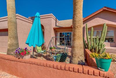 Phoenix Single Family Home For Sale: 806 W Oraibi Drive