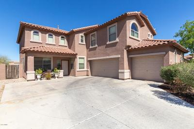 Maricopa Single Family Home For Sale: 22362 N Vargas Drive