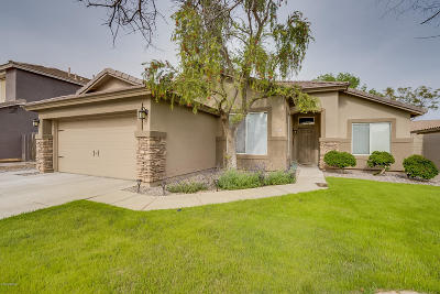 Gilbert Single Family Home For Sale: 3872 S Seton Avenue