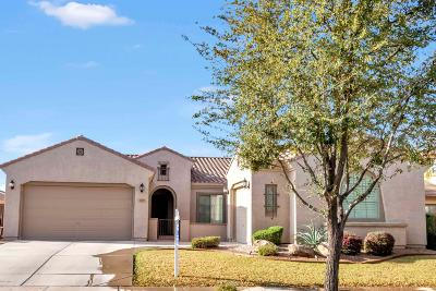 Gilbert Single Family Home For Sale: 3149 E Tonto Drive