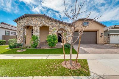 Mesa Single Family Home For Sale: 10607 E Meseto Avenue