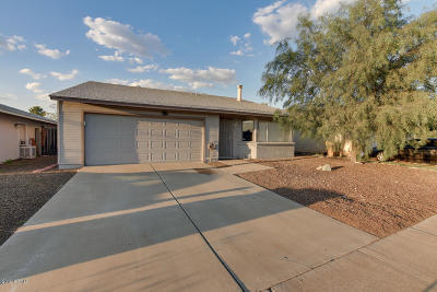Peoria Single Family Home For Sale: 8704 W Madison Street