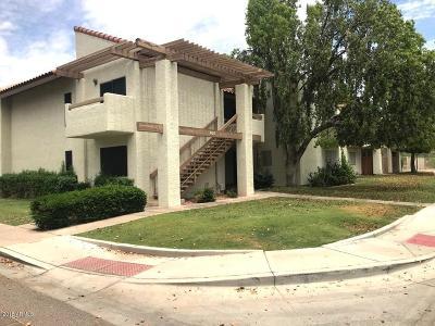 Phoenix Apartment For Sale: 808 E Lawrence Lane #205