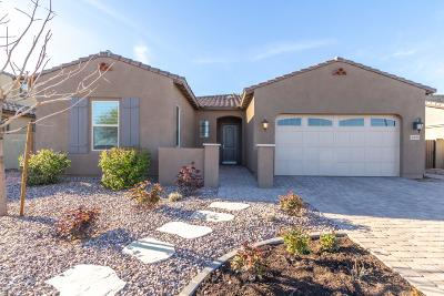 Gilbert Single Family Home For Sale: 3269 E Ironside Lane