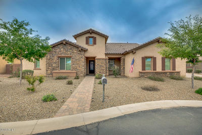 Queen Creek Single Family Home For Sale: 21931 E Tierra Grande Court