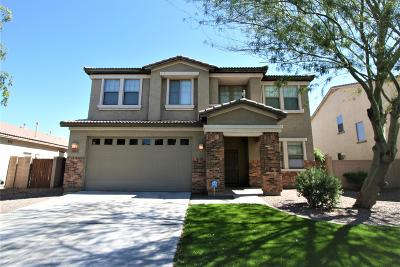 San Tan Valley Single Family Home For Sale: 28273 N Castle Rock Drive