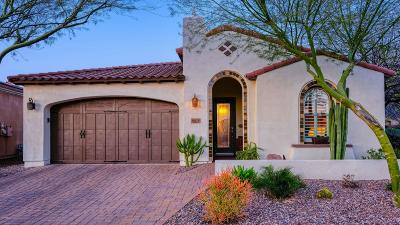 San Tan Valley Single Family Home For Sale: 1604 E Laddoos Avenue