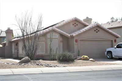 Cave Creek Single Family Home For Sale: 4015 E Creosote Drive