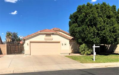 Mesa Single Family Home For Sale: 11358 E Dartmouth Street