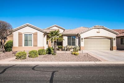 Eloy Single Family Home For Sale: 4804 W Mohawk Drive