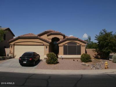 Maricopa AZ Single Family Home For Sale: $225,000
