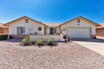 Mesa Single Family Home For Sale: 1891 Leisure World