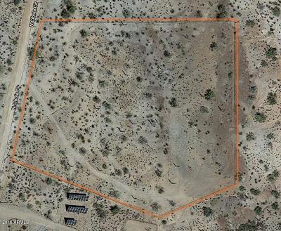 Queen Creek Residential Lots & Land For Sale: 28349 N Cibola Circle