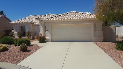Goodyear Single Family Home For Sale: 4078 N 162nd Drive