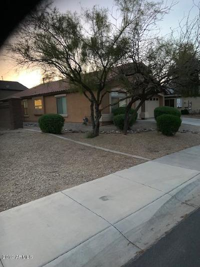Goodyear Single Family Home For Sale: 2876 S 160 Lane