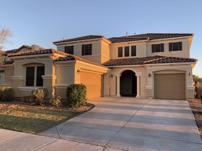 Queen Creek Single Family Home For Sale: 22321 E Creekside Drive