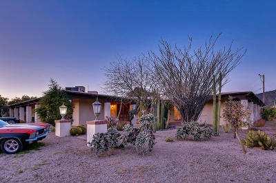 Cave Creek Single Family Home For Sale: 7045 E Arroyo Road