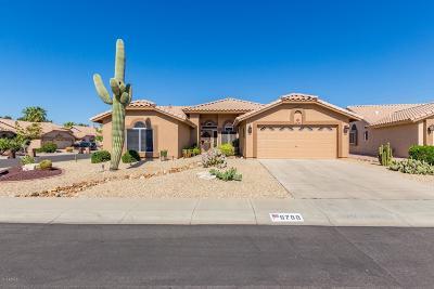 Peoria Single Family Home For Sale: 8788 W Sierra Pinta Drive
