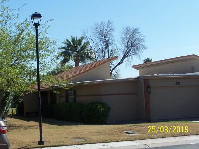 Mesa Condo/Townhouse For Sale: 291 Leisure World