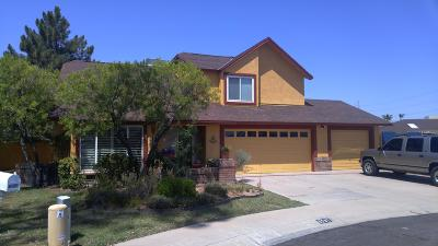 Glendale Single Family Home For Sale: 6507 W Shaw Butte Drive
