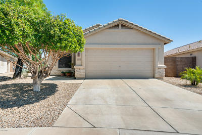 Phoenix Single Family Home For Sale: 19819 N 34th Place
