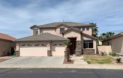 Maricopa Single Family Home For Sale: 43940 W McClelland Drive