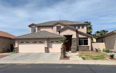 Maricopa Single Family Home For Sale: 43940 W McClelland Drive