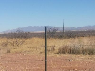Douglas Residential Lots & Land For Sale: Xxxx Hwy 80 Highway