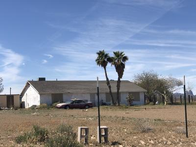 Tonopah Single Family Home For Sale: 9022 S 538th Avenue