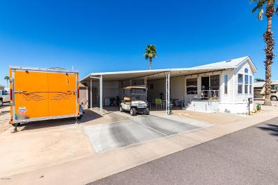 Mesa Single Family Home For Sale: 3020 E Main Street #C28