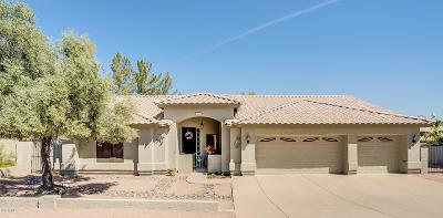 Fountain Hills AZ Single Family Home For Sale: $375,000
