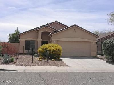 Anthem Single Family Home For Sale: 4509 W Crosswater Way