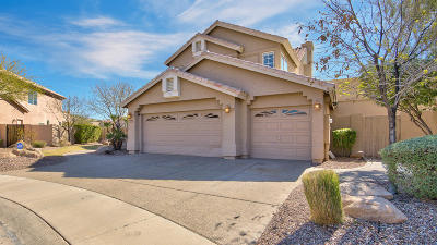 Phoenix Single Family Home For Sale: 15031 S Foxtail Lane