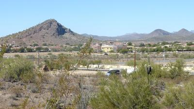 Peoria Residential Lots & Land For Sale: 9400 W Yearling Road