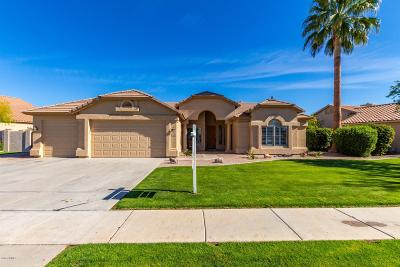 Chandler Single Family Home For Sale: 1560 W Blue Ridge Way