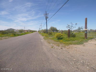Residential Lots & Land For Sale: 38624 N 7th Avenue
