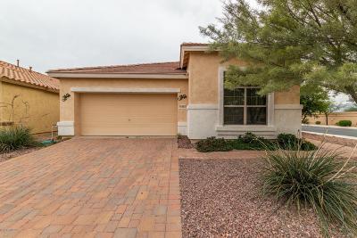 Surprise Single Family Home For Sale: 18283 W Buena Vista Drive