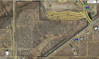 Douglas  Residential Lots & Land For Sale: Xxx E Hwy 80