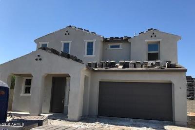 Phoenix Single Family Home For Sale: 6626 E Rose Marie Lane
