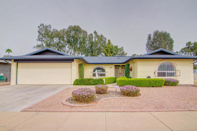 Mesa Single Family Home For Sale: 665 S Rochester