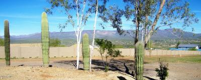 New River Residential Lots & Land For Sale: 43818 N 11 Avenue