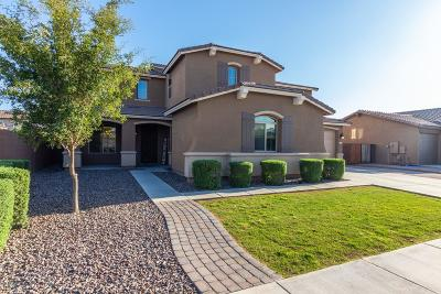 San Tan Valley Single Family Home For Sale: 1217 W Fever Tree Avenue