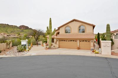 Gold Canyon Single Family Home For Sale: 4718 S Rimrock Loop
