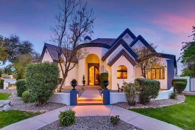 Gilbert Single Family Home For Sale: 2565 E Via De Palmas