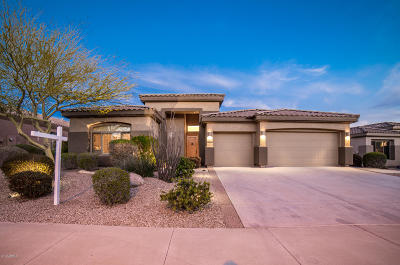 Goodyear Single Family Home For Sale: 9723 S 182nd Drive